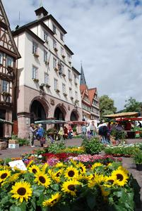 Große Kreisstadt Calw